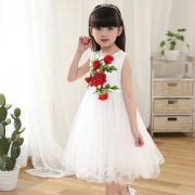 www.0092store,pk lovely girl dresses (352)