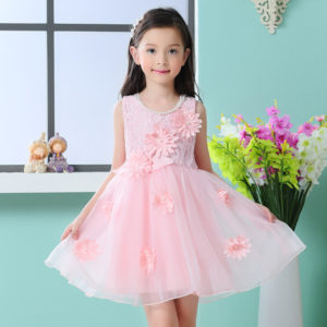 Lace Applique Flower Organza Frock