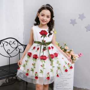 Embroidery Rose Net Cotton linning Frock