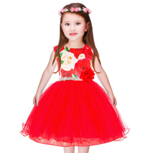 Royal Red Roses Silver Lace Net Frock for Summer